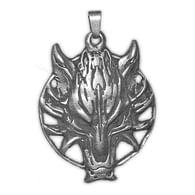 Amulet Zaklínač
