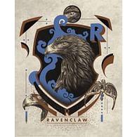 Art Print Harry Potter - Havraspár