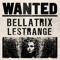 Blahopřání Harry Potter 3D - Bellatrix Lestrange Wanted