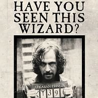 Blahopřání Harry Potter 3D - Have You Seen This Wizard?