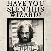 Blahopřání Harry Potter 3D - Have You Seen This Wizard?