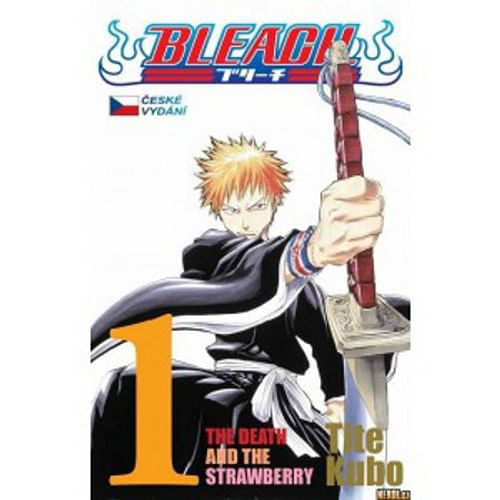 Bleach 1: The Death and the Strawberry