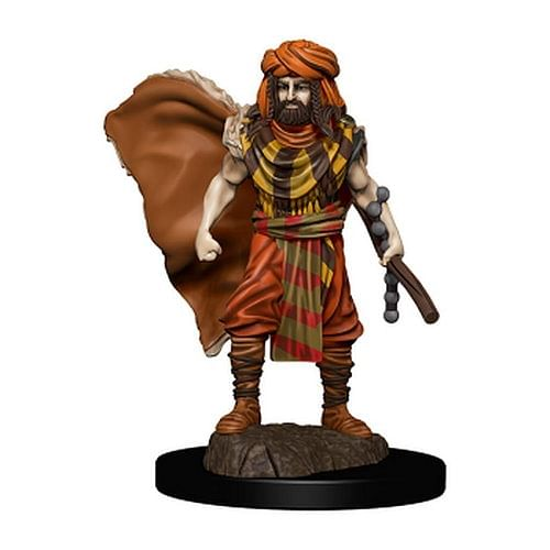 D&D Miniatures: Icons of the Realms - Human Druid Male