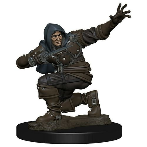 D&D Miniatures: Icons of the Realms - Human Rogue Male