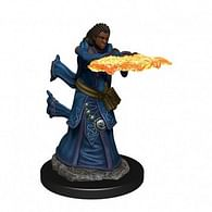D&D Miniatures: Icons of the Realms - Human Wizard Female