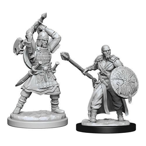 Dungeon & Dragons Nolzur s Marvelous Miniatures - Human Barbarian Male