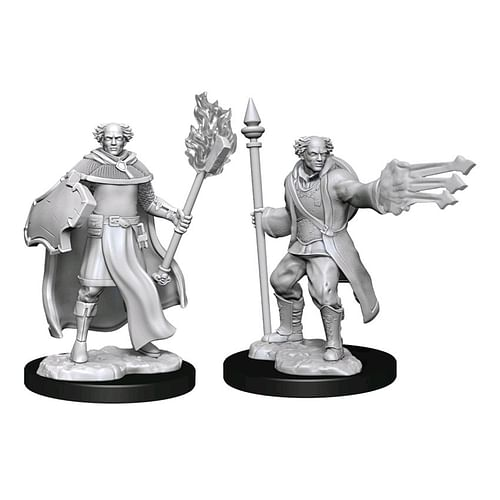 Dungeons & Dragons Nolzur s Marvelous Miniatures - Multiclass Cleric & Wizard Male