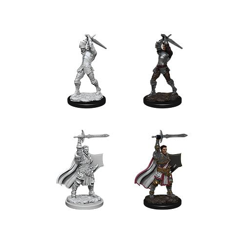 Dungeons & Dragons: Nolzur s Miniatures - Male Human Paladin