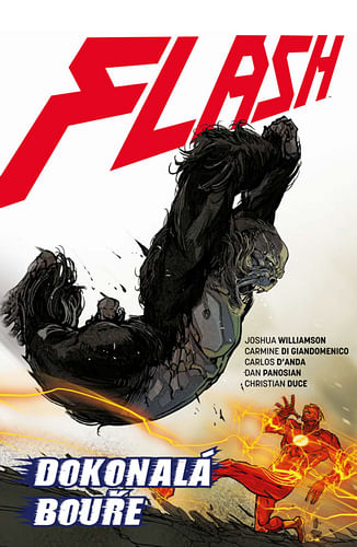 Flash 7: Dokonalá bouře