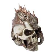 Lebka Pána draků