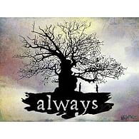Obraz na plátně Harry Potter - Always