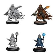 Pathfinder Battles: Deep Cuts Miniatures - Evil Wizards