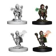 Pathfinder Battles: Deep Cuts Miniatures - Gnome Male Druid
