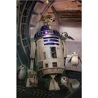 Plakát Star Wars: The Last Jedi - R2-D2 & Porgs