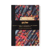 Replika Harry Potter - Bradavický zápisník