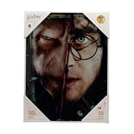 Skleněný plakát Harry Potter - Harry a Voldemort