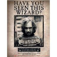 Skleněný plakát Harry Potter - Sirius