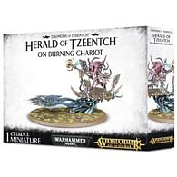 Warhammer: Herald of Tzeentch on Burning Chariot