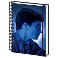 Zápisník Harry Potter - Magický portrét 3D