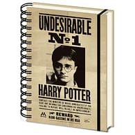 Zápisník Harry Potter - Sirius & Harry 3D